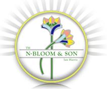 N. Bloom & Son